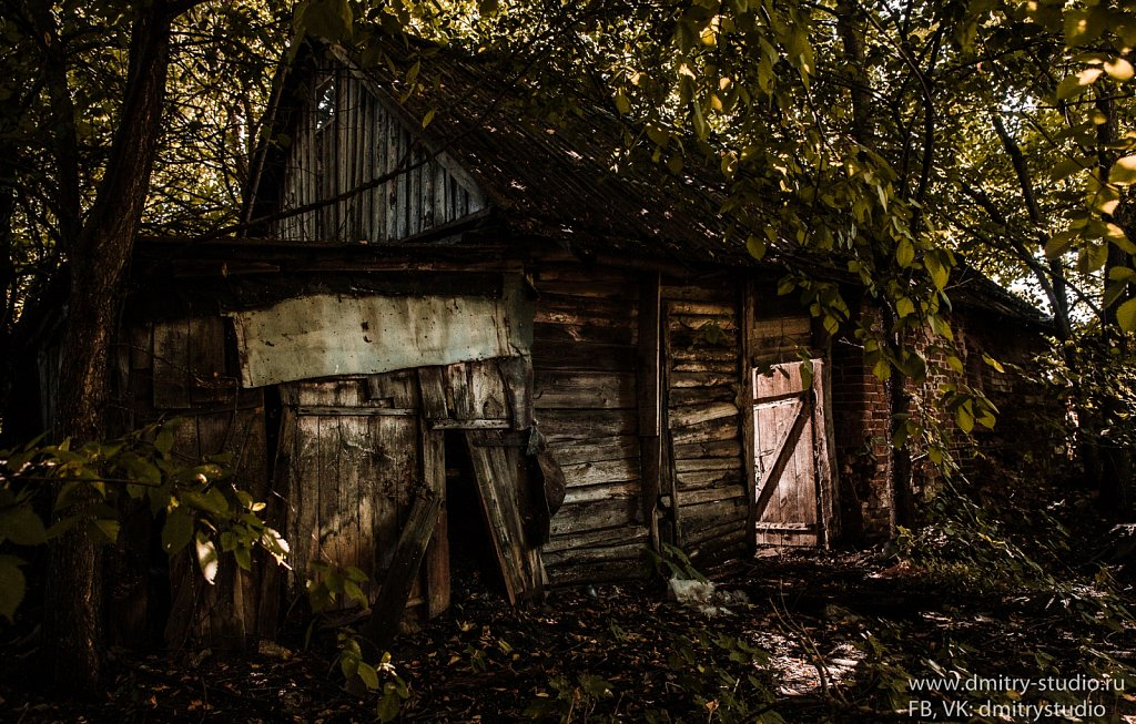 Rusted house in forest